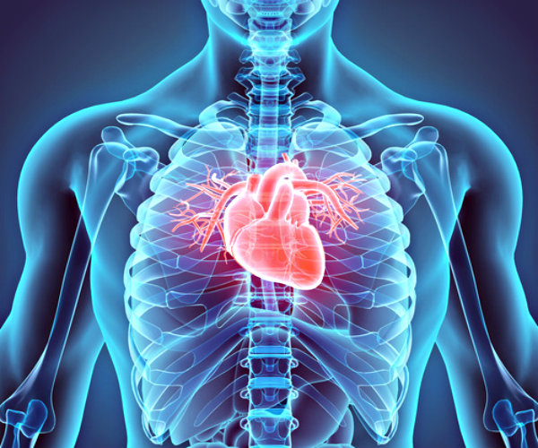 Cardiologists Are Using Hybrid Approach For Prevention Of Cardiovascular Diseases
